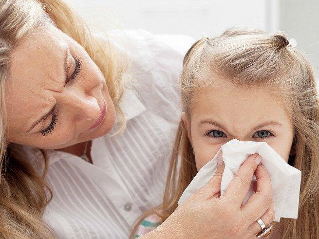 что делать, если есть аллергия на йорка