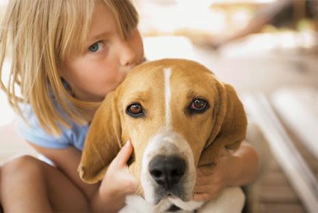 ревность собаки к детям