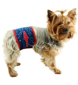 Собака писает с кровью: причины и лечение